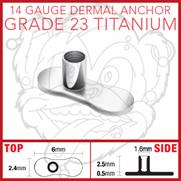 Grade 23 Solid Titanium Single Piece No Hole Dermal Anchor